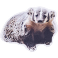 Image For Blue 84 Badger Decal Sticker