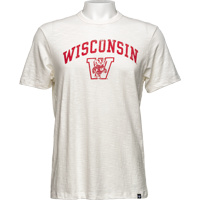 Image For '47 Brand Distressed Wisconsin T-Shirt (White)