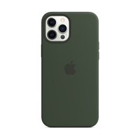 Image For Apple iPhone 12 Pro Max Silicone Case: Cyprus Green